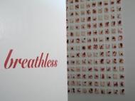 Breathless installation 1